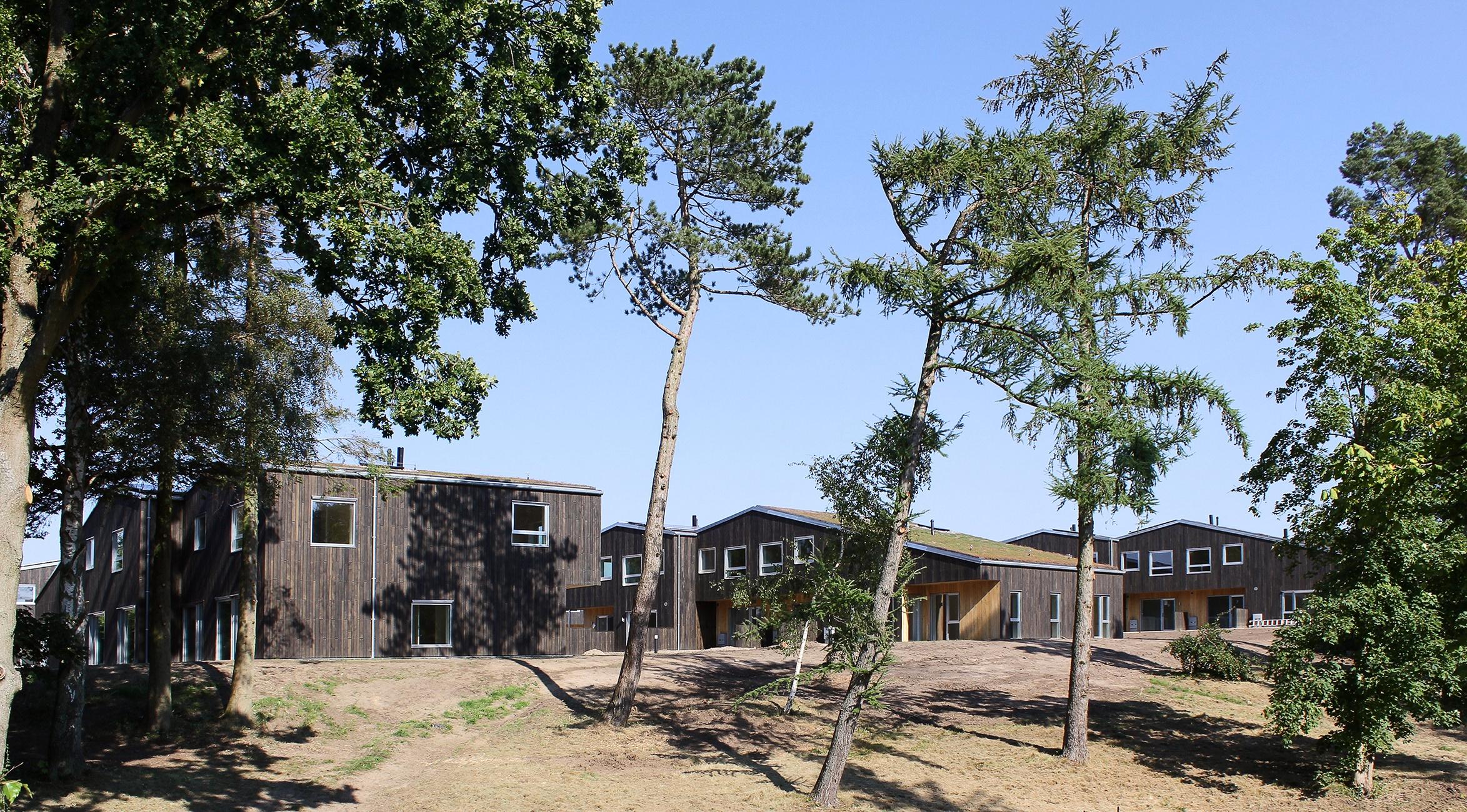 Tømmergården almen bolig plus ONV arkitekter Jyllinge